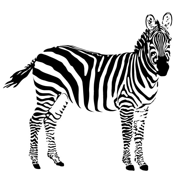 ... Zebra Wall Decal Large Image 1