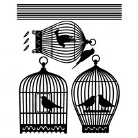 Birdcages Wall Decal Comp