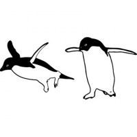 Two Funny Penguins Wall Decal
